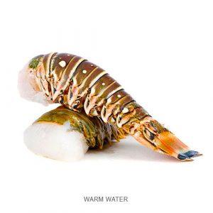 Lobster Tail Warm/Cold size 4-5oz/ 10-12oz / Lb