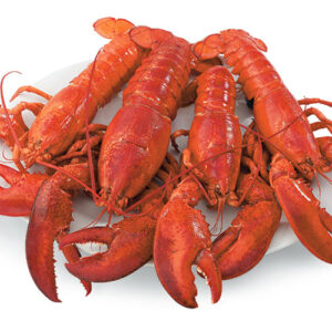 Lobsters Chix 5  (1 lb) cooked