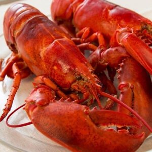 Maine Lobster 3 lb cooked